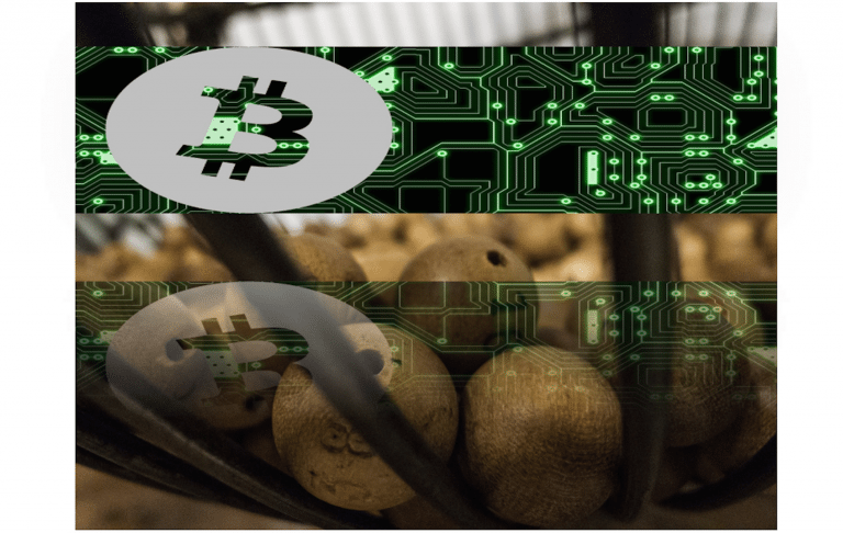 Lotería va a premiar con bitcoins. Premio de 1025 BTC ¿te lo vas a perder?