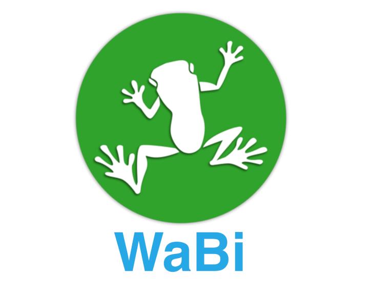 ¿Qué es Wabi? No a la falsificación de productos