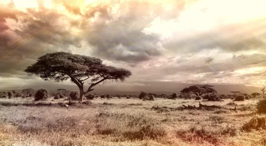 La tecnología blockchain puede resolver los problemas de energía de África