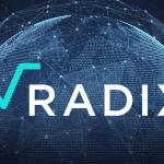 proyecto radix