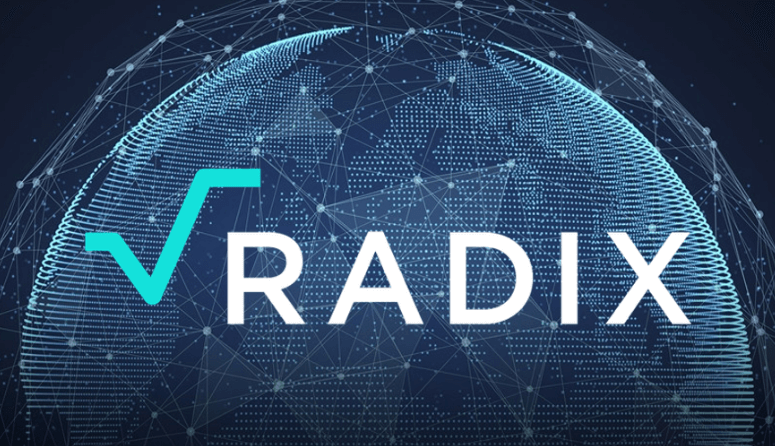radix acabara con blockchain